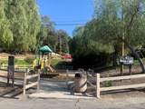 3554 Gladiola Drive - Photo 50