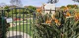 4030 Porte De Palmas - Photo 55