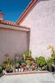 1134 Zarza Corte - Photo 51