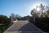 18386 Via Ambiente - Photo 6