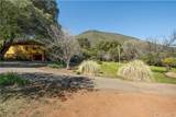 8987 Soda Bay Road - Photo 10