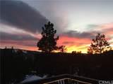 1159 Green Mountain Drive - Photo 10