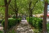 41965 Mesa Verdugo - Photo 49