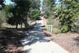 35880 Iodine Springs Road - Photo 18