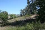35880 Iodine Springs Road - Photo 19