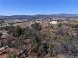 35880 Iodine Springs Road - Photo 6