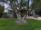 246 Catalina Street - Photo 44