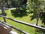 2809 Los Felices Cir - Photo 9