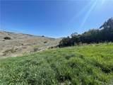 27952 Golden Ridge Lane - Photo 8