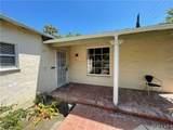 914 Catalina Street - Photo 4