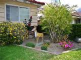 5551 Del Loma Avenue - Photo 63