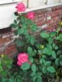 5551 Del Loma Avenue - Photo 66