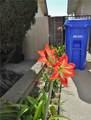 5551 Del Loma Avenue - Photo 68