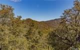 6062 Plumbar Creek Road - Photo 11