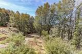 6062 Plumbar Creek Road - Photo 24