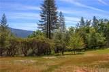 5855 Evergreen Lane - Photo 49
