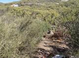 6 Rincon Ridge - Photo 1
