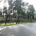 2 Saraceno - Photo 25