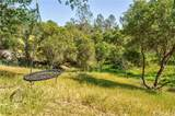 42000 Long Hollow Drive - Photo 44