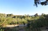 4240 Lost Hills Road - Photo 14
