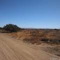 10611 Yucca Terrace Drive - Photo 5