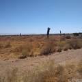 10611 Yucca Terrace Drive - Photo 6