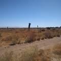 10611 Yucca Terrace Drive - Photo 7