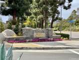 33356 Coral Reach Street - Photo 43