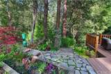 53950 Dogwood Creek Drive - Photo 54