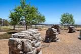 10702 Delphinium Drive - Photo 27