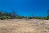 10861 Coyote Trail - Photo 14
