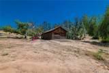 10861 Coyote Trail - Photo 18