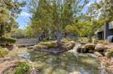 25465 Pine Creek Lane - Photo 32