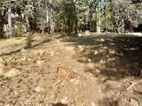 6356 Sugar Pines Circle - Photo 3