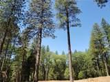 0 Pine Way - Photo 5