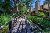 18223 Soledad Canyon Road - Photo 4