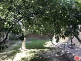 13338 Magnolia - Photo 19