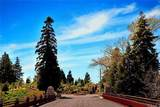 136 Mill Pond Road - Photo 9