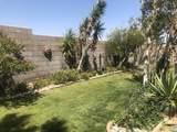 60220 Palm Oasis Avenue - Photo 16