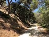 555 Creek Trail - Photo 1