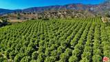 2856 Maricopa Highway - Photo 10
