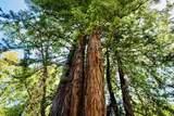 335 Skyforest Way - Photo 16
