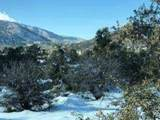 0 Scrub Oak Drive - Photo 2