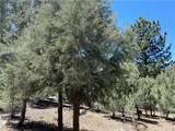 15120 Acacia Way - Photo 5