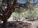 15120 Acacia Way - Photo 6