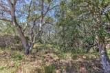 18221 Berta Canyon Road - Photo 4