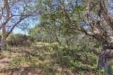 18221 Berta Canyon Road - Photo 8
