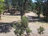 51337 Hillside Dr - Photo 29
