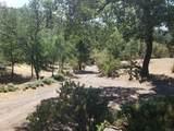 51337 Hillside Dr - Photo 30