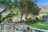39526 Canyon Drive - Photo 27